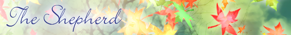 banner_autumn.png