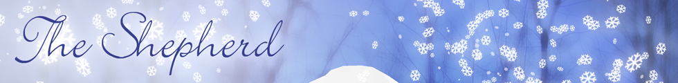 banner_winter.png